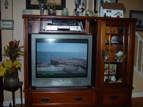 BEAUTIFUL ALL WOOD MISSION STYLE TV CABINET + TV   MINT