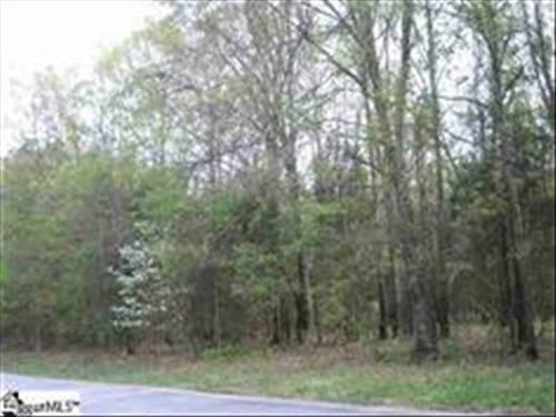 Beautiful Land For Sale 50.53 Acres In Woodruff SC