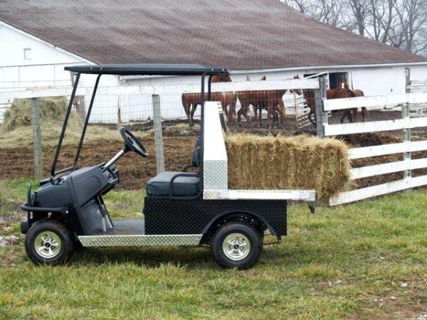 Big Boy* Golf Cart Extra Heavy Duty Aluminum Flatbed - (Cape ... Golf Cart Boys on plow boy, golf bag boy, shopping cart boy,