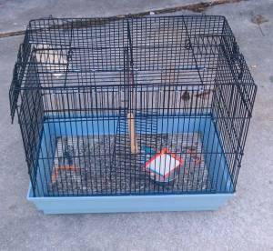 Bird Cage - $15 (Baytown)