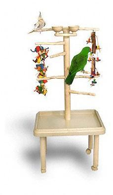 Bird Play Stand Tree Stand Perch For Sale In Galloway