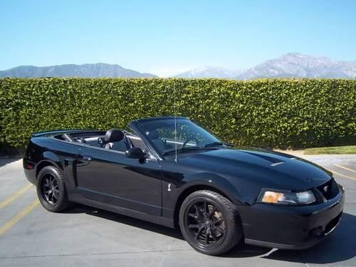 black 2003 ford mustang svt cobra convertible manual 6 spd for sale in upland california. Black Bedroom Furniture Sets. Home Design Ideas