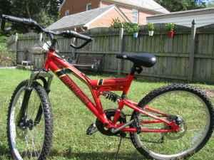 boys/youth 24-inch harley davidson bicycle - (newport news) for