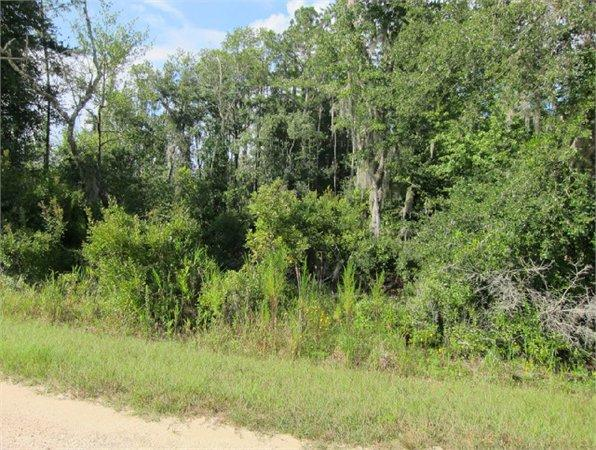 Bronson, FL Levy Country Land 21.120000 acre