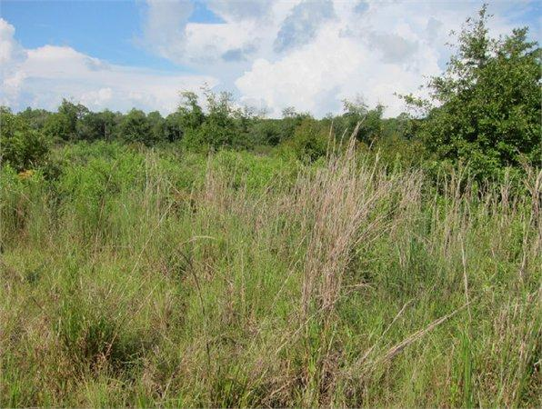 Bronson, FL Levy Country Land 27.420000 acre