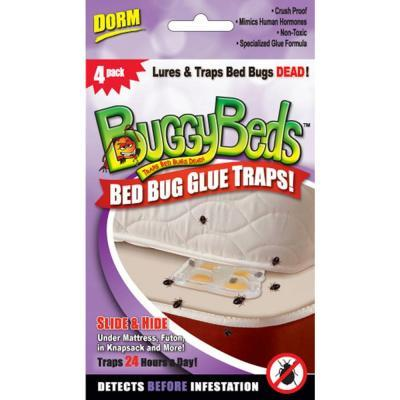 buggybeds dorm pack bed bug glue traps detects and lures