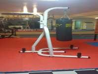 Century Bag Stand and Everlast Heavy bag