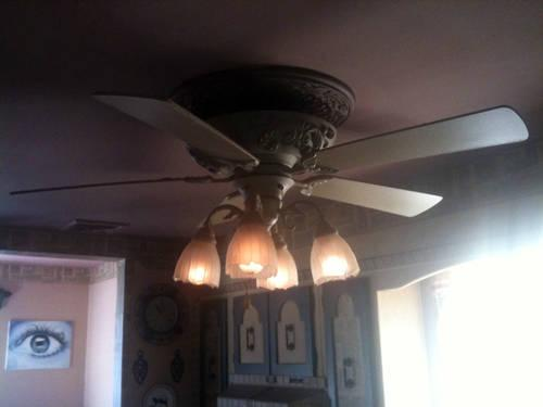 Charming 3-Speed Ceiling Fan With Lights