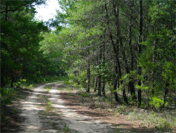 Chipley, FL Washington Country Land 268.000000 acre