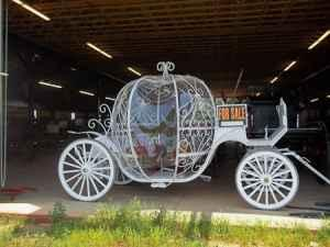 Cinderella Wedding Carriage (Greer, SC)