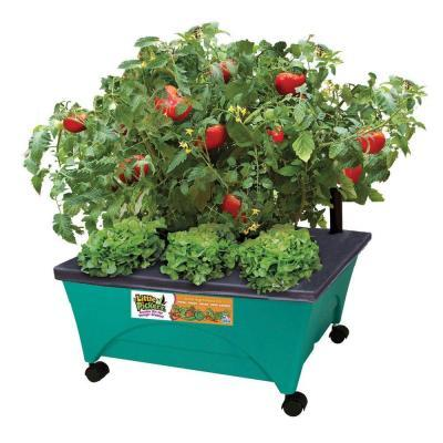 CITY PICKERS 24.5 in. x 20.5 in. Patio Raised Garden Bed