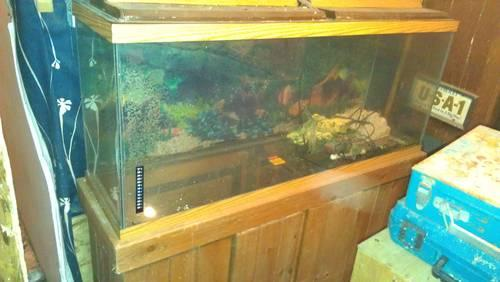 Clean Used 3, 75-Gallon Fish Tank stack and stand and others