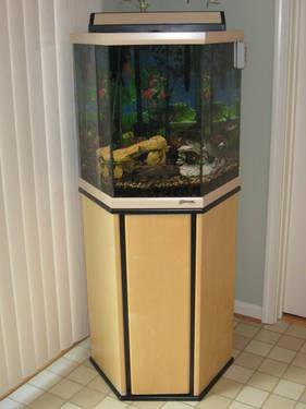 Clean Used 42 Gallon Hexagonal Aquarium W Base Filters