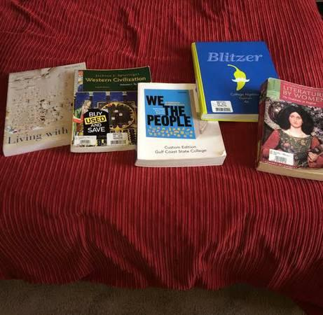 COLLEGE BOOKS FOR SALE - $70