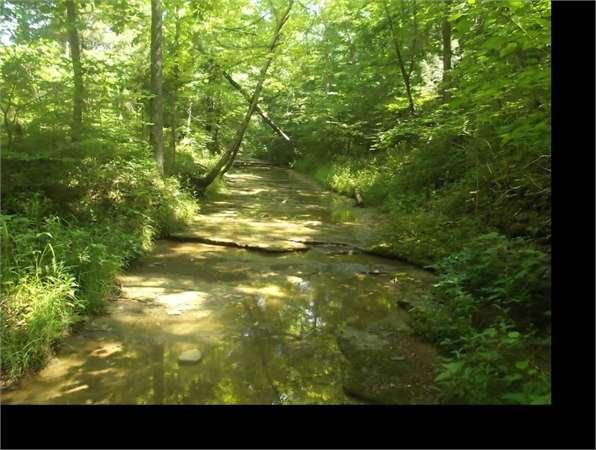Columbia Ky Adair Country Land 41 3000 Acre For Sale In