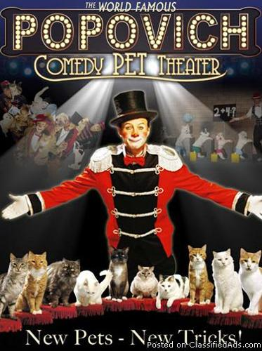 Comedy Pet Theater