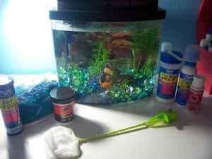 Complete fish aquarium setup like new small tank and for Small fish tanks for sale