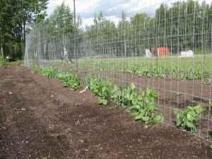 Compost and garden soil wasilla anchorage for sale in for Garden soil for sale