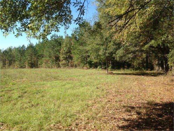 Cottondale Al Tuscaloosa Country Land 229000000 Acre For Sale In