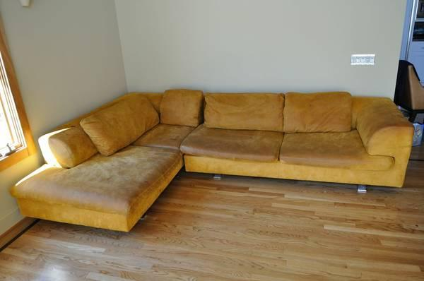 couches, chair, rug - $50