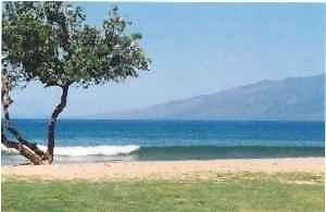 Cozy 2Br/ 1Ba near Kaanapali Across from Beach Park -