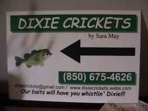 CRICKETS FOR SALE - $3 (JAY)