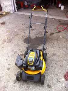 Cub Cadet Self Propelled Lawn Mower Sussex For Sale