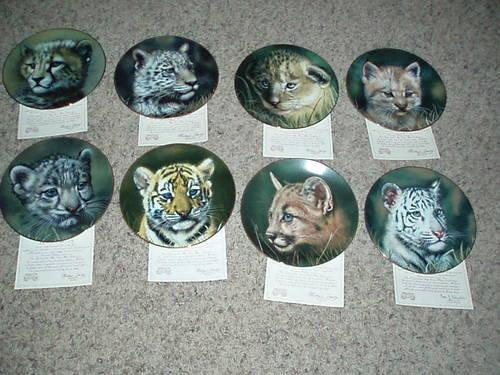 Cubs of the Big Cats Snow Leopard Cub Plate Collection