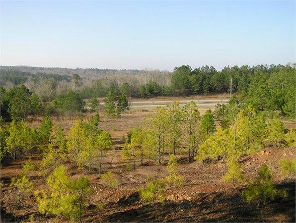 Dadeville, AL Tallapoosa Country Land 42.000000 acre