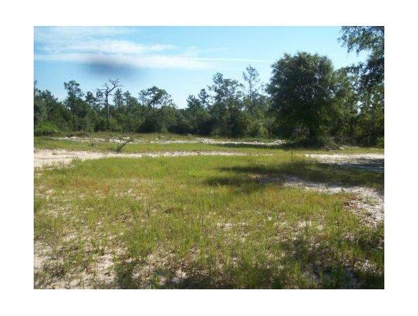 De Funiak Springs, FL Walton Country Land 1.000000 acre