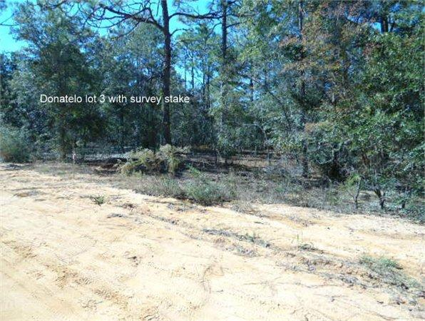 DeFuniak Springs, FL Walton Country Land 0.388000 acre