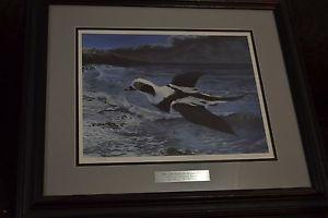 Details about FRAMED PRINT Alaska Longtail Duck by Bruce W Nelson Ducks Unlimited