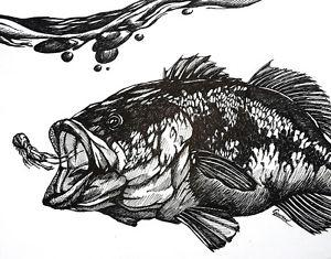 Details About Original Animal Pen Ink Drawing Largemouth Bass