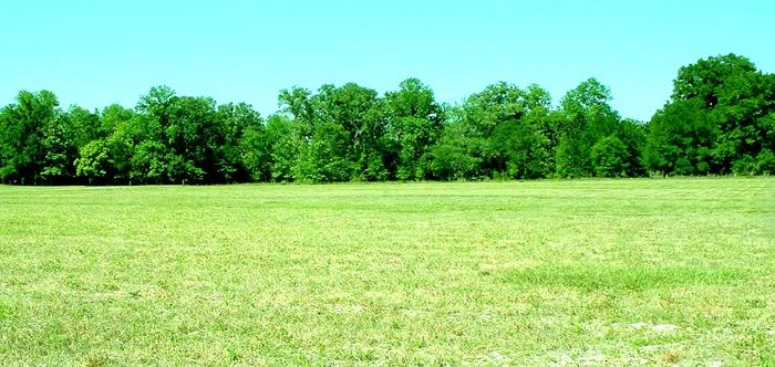 Developed Land in High Springs, Florida, Ref# 2546920