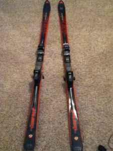 Dynastar skis great condition - $50 (Pueblo west)