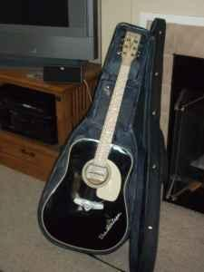 Estaban Vintage Guitar - $125 (highlands ranch)