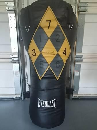 Everlast Punching Bag Classifieds Across The Usa Page 3 Americanlisted