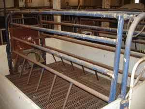Farrowing Crates New Vienna Ia For Sale In Dubuque