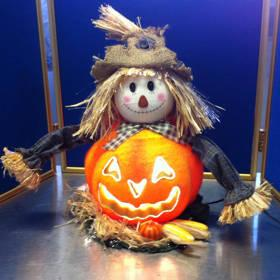 Fiber Optic Scarecrow Pumpkin Lighted Halloween Decoration Display
