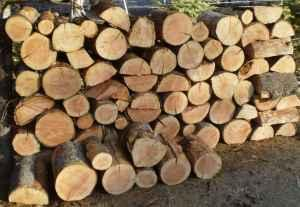 Firewood For sale - $225 (newport)