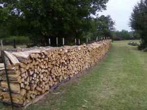 Firewood Trees For Sale Iowa
