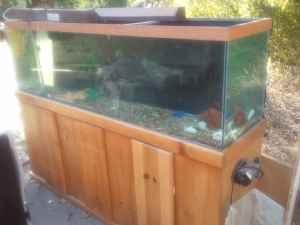 Fish tank 55 gallon or 125 gallon with stand or 15 gallon for 15 gallon fish tank stand