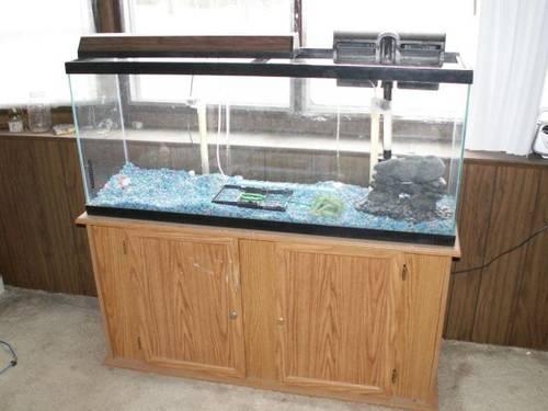 fish tank 55 gallon,used