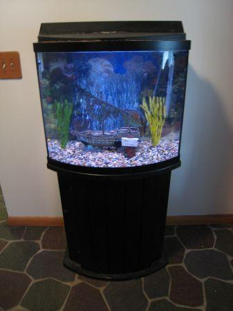 Fish tank with stand for sale west mobile for sale for 200 gallon fish tank for sale