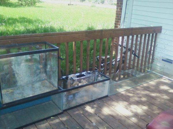 Fish tanks for sale in michigan fish tanks more fish for 150 gallon fish tank for sale craigslist