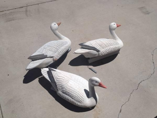 Floating snow geese decoys - $30