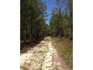 Fountain, FL Calhoun Country Land 1436 acre