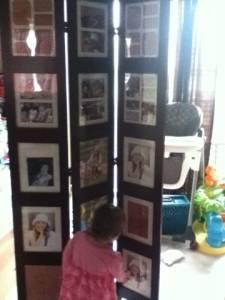 Free Standing Picture Frame Room Divider Albany For Sale In