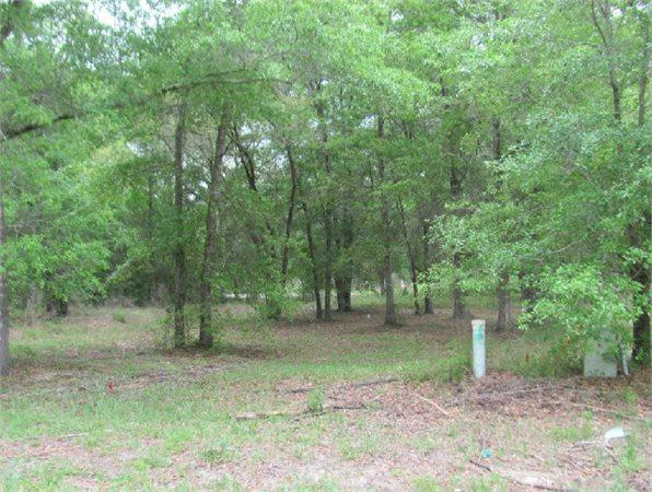 Freeport, FL Walton Country Land 0.140000 acre