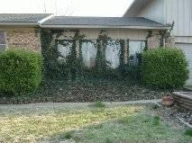 FSBO 4bd 3ba Home with Inground Pool Fenced Yard below
